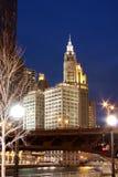 Edifícios de Chicago - da baixa Imagens de Stock