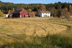 Edifícios de exploração agrícola no campo Fotografia de Stock