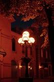Edifício, lâmpada de rua e árvore de bordo velhos em nigh Fotos de Stock