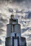 Edifícios do silo Fotos de Stock