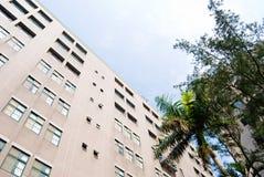 Edifici per uffici con il cielo degli alberi Immagine Stock