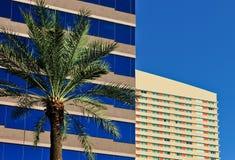 Edifici per uffici e palma Fotografia Stock