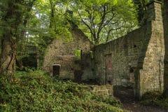Edificio abandonado arruinado viejo fantasmagórico en paisaje grueso del bosque Imagenes de archivo