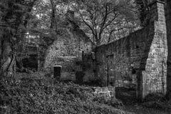 Edificio abandonado arruinado viejo fantasmagórico en paisaje grueso del bosque adentro Fotos de archivo