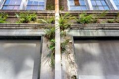 Edificio abandonado en New Orleans 1 Fotos de archivo