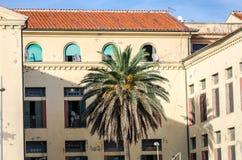 Edificio antiguo viejo con las ventanas y las puertas y delante de una palmera que crece en la orilla del mar cerca del puerto de Foto de archivo libre de regalías