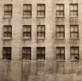 Edificio arruinado viejo Imagen de archivo