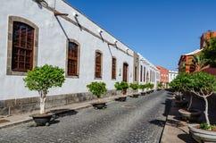 Edificio blanco con los pequeños árboles en potes en una calle con los adoquines Imagenes de archivo