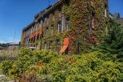 Edificio con la fachada overgrown Foto de archivo