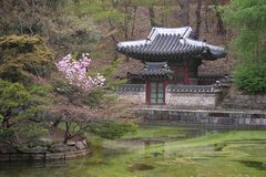 Edificio coreano Imagenes de archivo