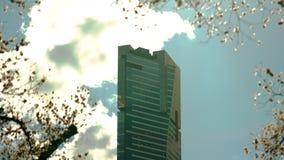 Edificio de Eureka de Melbourne delante de las semillas en el viento almacen de video