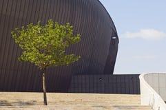 Edificio de la bóveda Foto de archivo