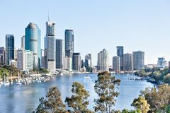 Edificio de la ciudad de Brisbane con el r?o alrededor de ?rboles en el d?a soleado foto de archivo