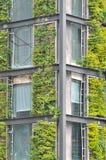Edificio de la estructura de acero cubierto por la planta verde Fotos de archivo