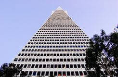 Edificio de la pir?mide de Transamerica foto de archivo libre de regalías