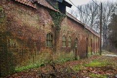 Edificio de ladrillo antiguo cubierto con el musgo Fotos de archivo libres de regalías