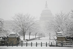 Edificio del capitolio, invierno, Washington, C.C., los E.E.U.U. Foto de archivo libre de regalías