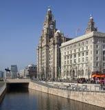 Edificio del hígado - Liverpool - Inglaterra Fotografía de archivo libre de regalías