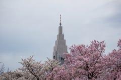 Edificio del NTT Docomo Yoyogi, un grattacielo in Shibuya, Tokyo, Giappone Con i ciliegi in Shinjuku Gyoen nella priorità alta Fotografie Stock Libere da Diritti