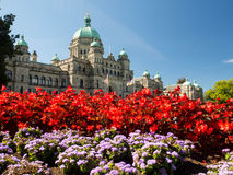 Edificio del parlamento de la Columbia Británica en la plena floración Fotos de archivo libres de regalías