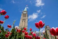 Edificio del parlamento en Ottawa Canadá Imagenes de archivo