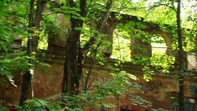 Edificio destruido viejo en bosque con los arcos metrajes