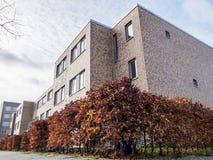 Edificio di Autumn Hedges Around Modern Apartment fotografie stock