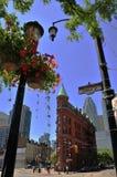 Edificio di Flatiron - di Toronto - Goodenham e mosti di malto fotografia stock libera da diritti