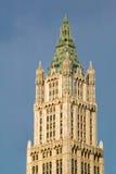 Edificio di Woolworth, architettura gotica neo, ornamen di terracotta Fotografia Stock