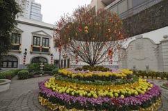 Edificio Leal de Senado en Macao Fotografía de archivo libre de regalías