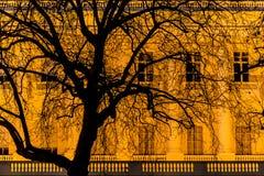 Edificio a lo largo de la calle que lleva al Buckingham Palace, St James Park, Londres, Inglaterra, Reino Unido de la alameda imagenes de archivo