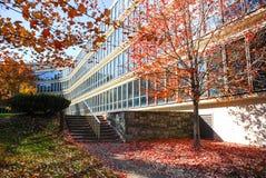 Edificio per uffici in autunno Immagini Stock Libere da Diritti