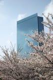 Edificio per uffici di Osaka. Fotografia Stock Libera da Diritti