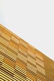 Edificio per uffici moderno con la facciata del legname Immagine Stock Libera da Diritti
