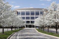 Edificio per uffici in primavera Fotografia Stock