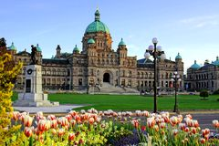 Edificio provincial del parlamento de la Columbia Británica con los tulipanes de la primavera fotografía de archivo