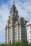 Edificio real del hígado de Liverpool Imagen de archivo libre de regalías