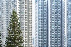 Edificio residenziale di alto aumento nella città di Hong Kong Immagine Stock