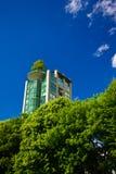 Edificio a través de árboles Fotografía de archivo libre de regalías