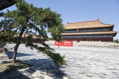 Edificio y árbol chinos foto de archivo