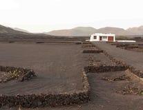 Edificio y viñedo blancos de Geria con las montañas en fondo Imagenes de archivo