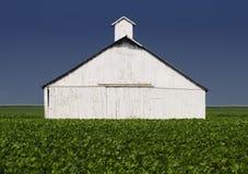 Edificios agrícolas foto de archivo libre de regalías