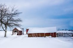 Edificios agrícolas rojos en invierno foto de archivo