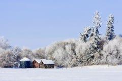 Edificios agrícolas viejos en invierno Imagen de archivo libre de regalías
