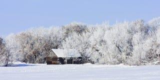 Edificios agrícolas viejos en invierno Foto de archivo