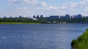 Edificios altos de desatención del río almacen de video