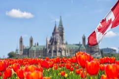 Edificios canadienses del parlamento en Ottawa Fotografía de archivo libre de regalías