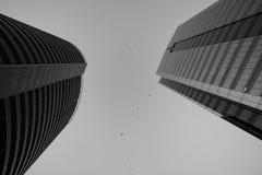 Edificios comerciales blancos y negros Fotos de archivo