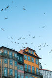 Edificios de casas en Oporto viejo céntrico Imagen de archivo libre de regalías