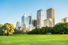 Edificios de la subida de la ciudad de Sydney altos con el área herbosa del parkland imagen de archivo